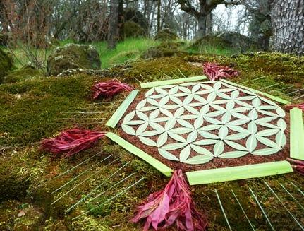 Floarea Vietii Mandala