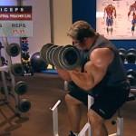 Brate - Bicepsi - Definirea musculaturii - 4. DB unilateral preacher curl