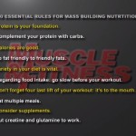 Nutritie 3. 10 reguli de nutritie esentiale pentru cresterea masei musculare
