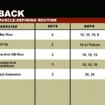 Spate - Definirea musculaturii - Program