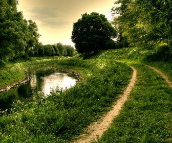 River_path_STOCK_by_needanewname