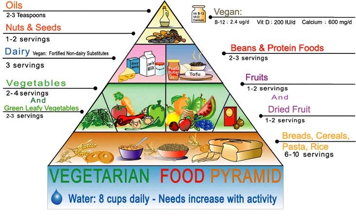 Piramida dietei vegetariene