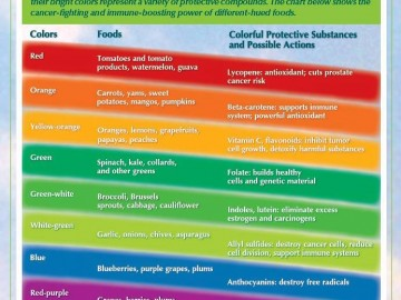 Curcubeul nutritiei