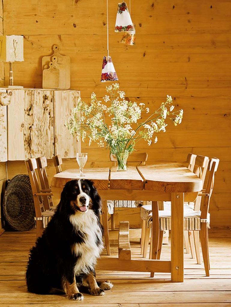 EcoFrontiers - Prima casa off the grid din lume - Rafal Lipski 17