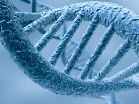 ADN si atomii de carbon