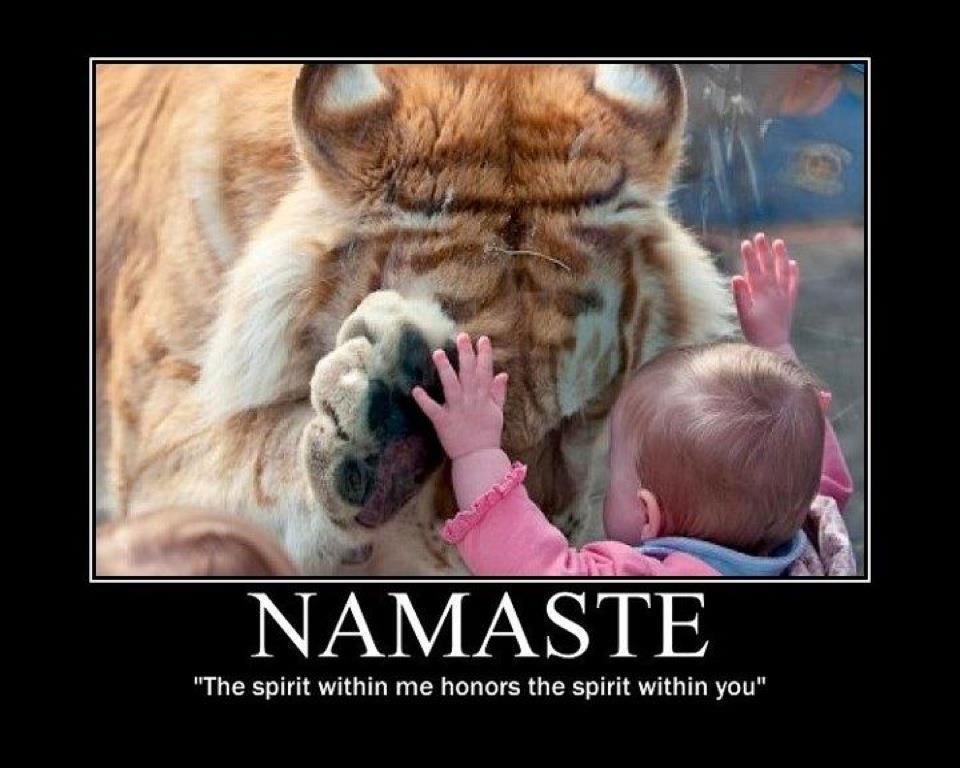 Namaste definitie