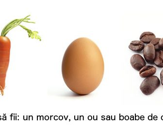 Povesti despre succes - Morcov ou boabe de cafea