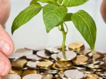 Planteaza bani